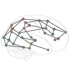 brain_net_icon